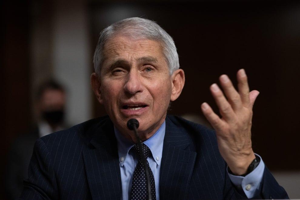 Tiến sĩ Anthony Fauci phát biểu trại phiên điều trần của Thượng viện về Covid-19 hôm 23/9. Ảnh: CNP