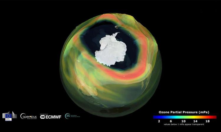 Lỗ thủng ozone ngày 11/9/2020. Ảnh: CAMS.