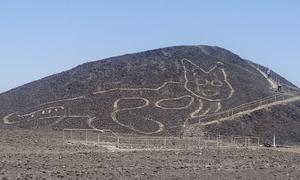 Hình vẽ mèo khổng lồ 2.000 năm tuổi giữa sa mạc