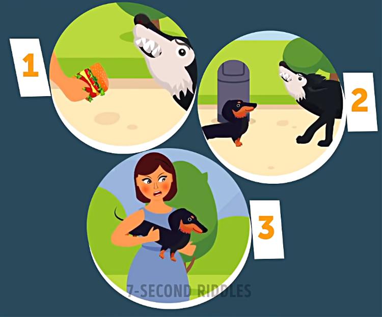 Kiểm tra kỹ năng sinh tồn với bốn câu đố - 4