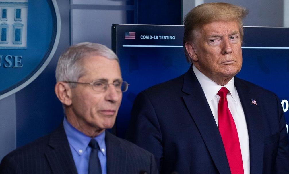 Fauci (trái) và Trump trong cuộc họp báo tại Nhà Trắng hồi tháng 4. Ảnh: AP.