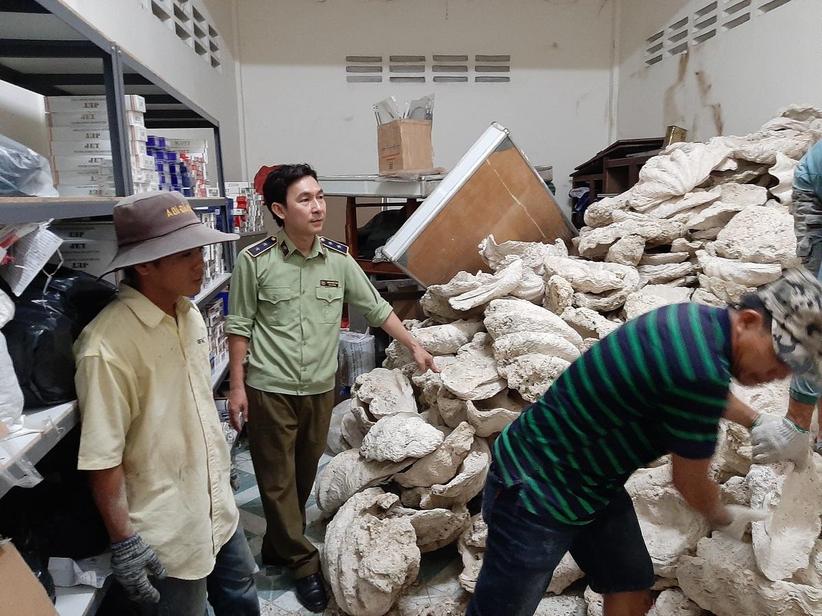 21 tấn vỏ sò tai tượng được chuyển giao lại cho bảo tàng. Ảnh: Cục Quản lý thị trường Tiền Giang.