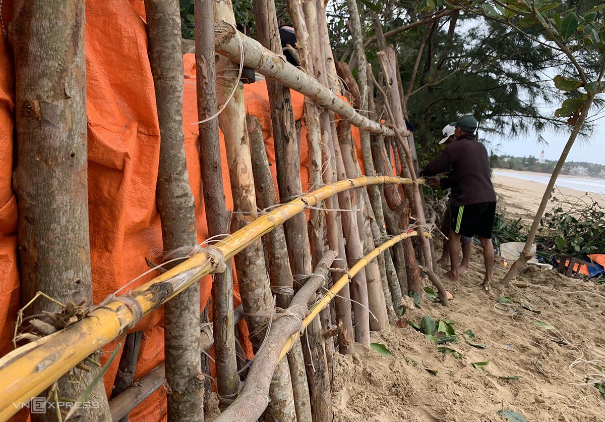 Người dân xã Bình Hải, huyện Bình Sơn, Quảng Ngãi dùng cây làm tường chắn để nhà khỏi hư móng do bão, ngày 26/7. Ảnh: Phạm Linh.