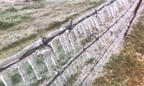 Bão mùa đông biến Oklahoma thành 'xứ sở băng giá'