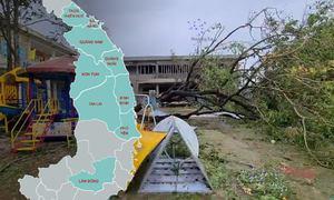 Hậu quả sau bão Molave