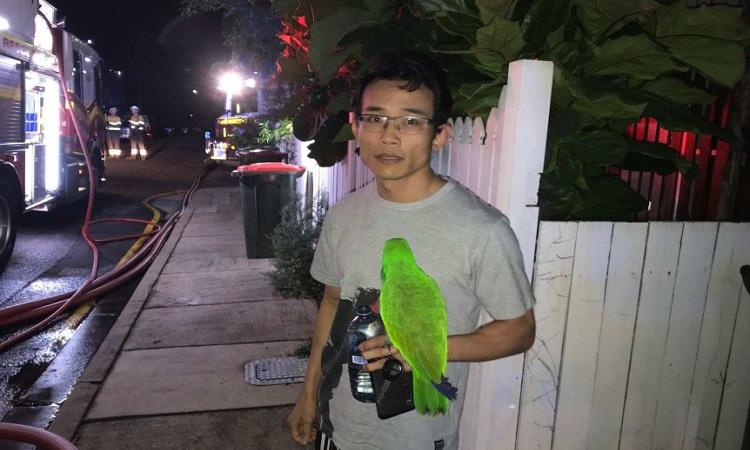 Anton Nguyen thoát chết cùng vẹt Eric. Ảnh: ABC News.