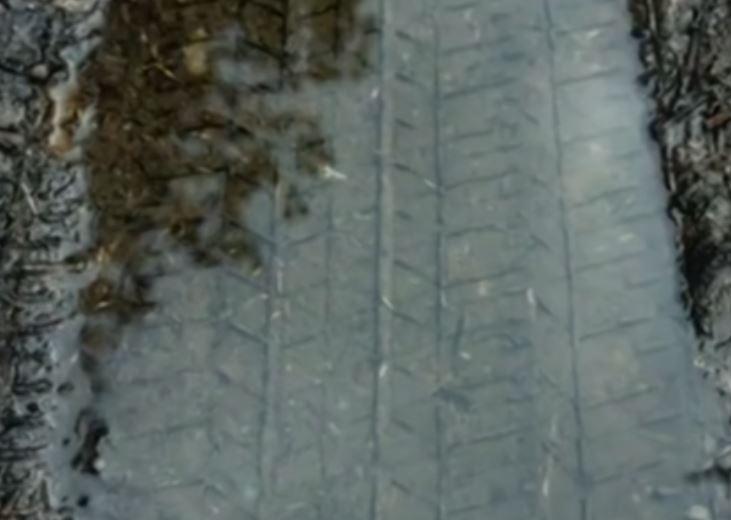 Vết lốp xe in trong bùn gần hiện trường án mạng nhà Ratliff. Ảnh: Lee County Sheriffs Office.