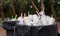 Không dùng ly, ống hút nhựa - ý nghĩa hay chạy theo phong trào?