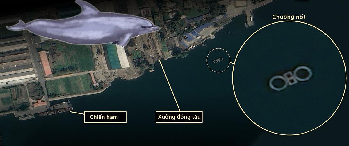 Chuồng nổi được cho là để nhốt cá heo gần một xưởng đóng tàu ở thành phố Nampo, Triều Tiên. Ảnh: CNES, Pleiades.