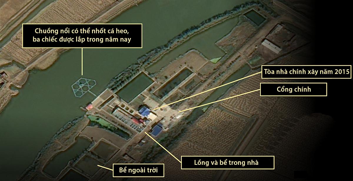 Cơ sở được cho là nơi nuôi và huấn luyện cá heo của Triều Tiên, ngày 6/10. Ảnh: CNES, Pleiades.