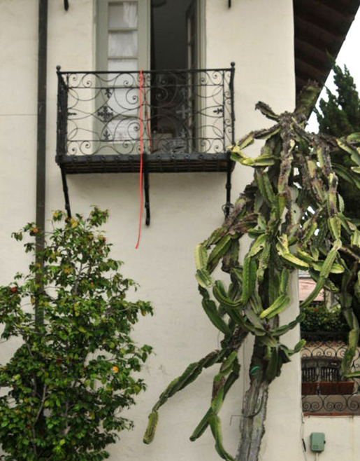 Lan can nơi xảy ra vụ treo cổ của Rebecca. Ảnh: San Diego Sheriffs Department.
