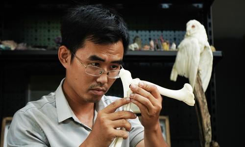 Chàng trai dựng tiêu bản từ xác động vật