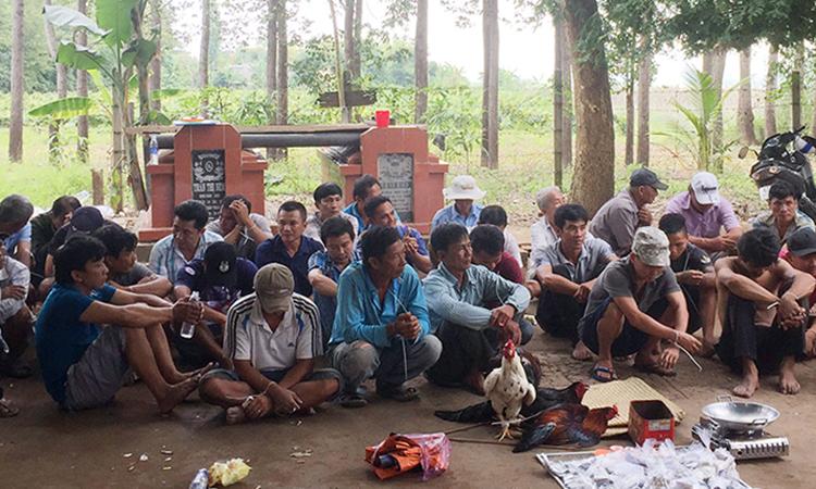 Trường gà ở xã An Hoà bị cảnh sát triệt phá ngày 20/11. Ảnh: An Phú