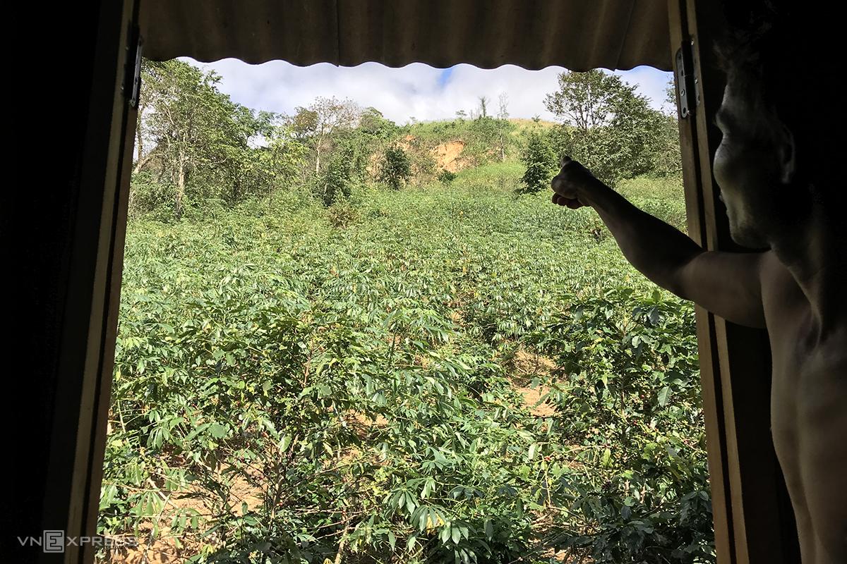 Từ cửa sổ nhà anh Hồ Văn Xuân nhìn lên phía đồi là điểm sạt lở. Ảnh: Hoàng Táo