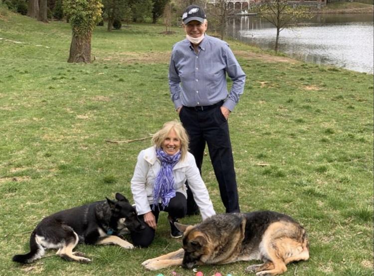 Vợ chồng Biden bên hai chú chó cưng Champ và Major. Ảnh: Twitter/FirstDogsChamp&MajorBiden.