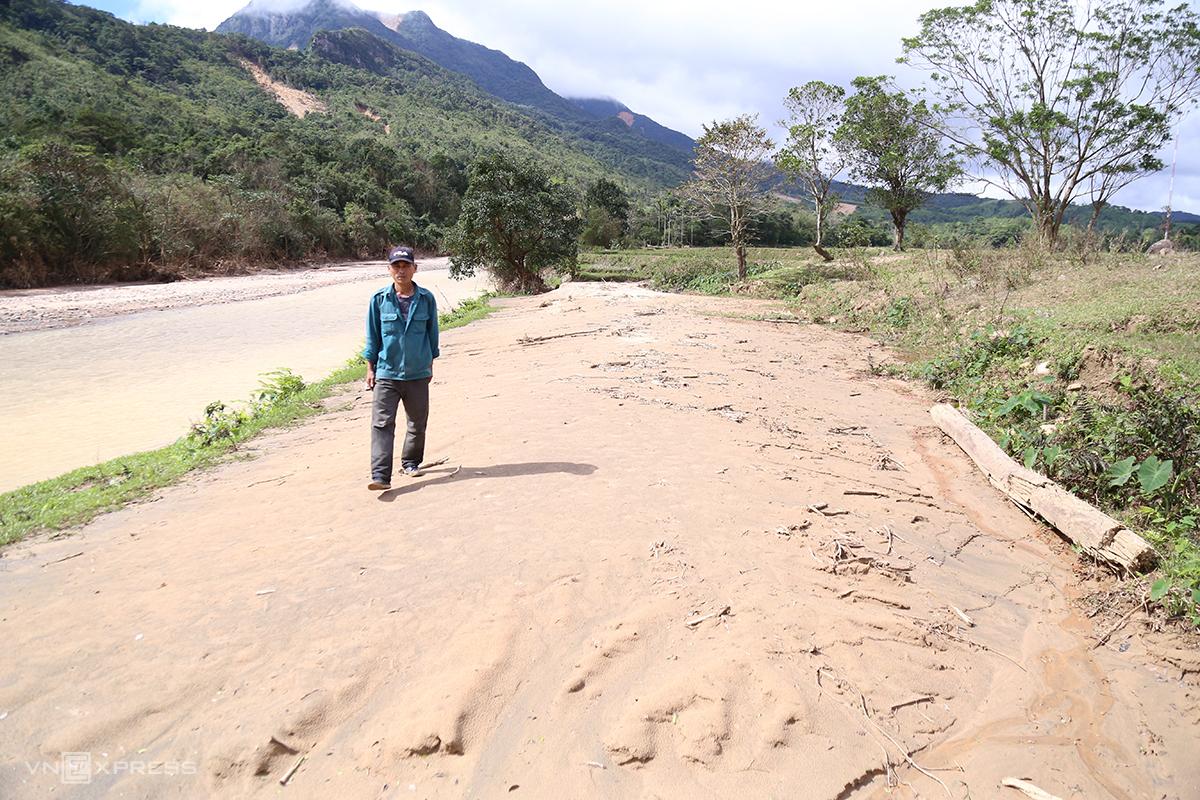 Ruộng lúa của gia đình anh Hồ Văn Rào bị vùi lấp hoàn toàn bởi cát. Ảnh: Hoàng Táo