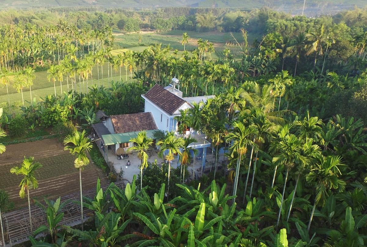 Ngôi nhà cấp 4 và thư viện hai tầng của anh Pháp giữa vườn cau xã Hành Nhân, huyện Nghĩa Hành. Ảnh: Nguyễn Pháp.