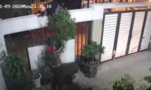 Leo rào trộm cây kiểng lúc nửa đêm