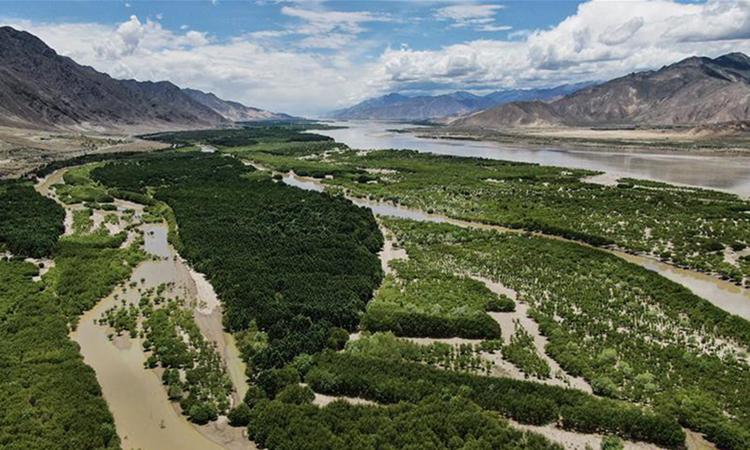 Ảnh chụp từ trên cao hồi tháng 6 cho thấy một khu rừng trú phòng hộ dọc sông Yarlung Zangbo ở khu tự trị Tây Tạng, phía tây nam Trung Quốc. Ảnh: Xinhua.