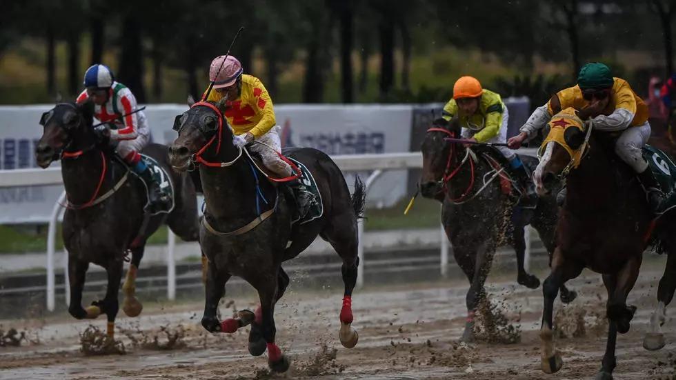 Đua ngựa ở Vũ Hán
