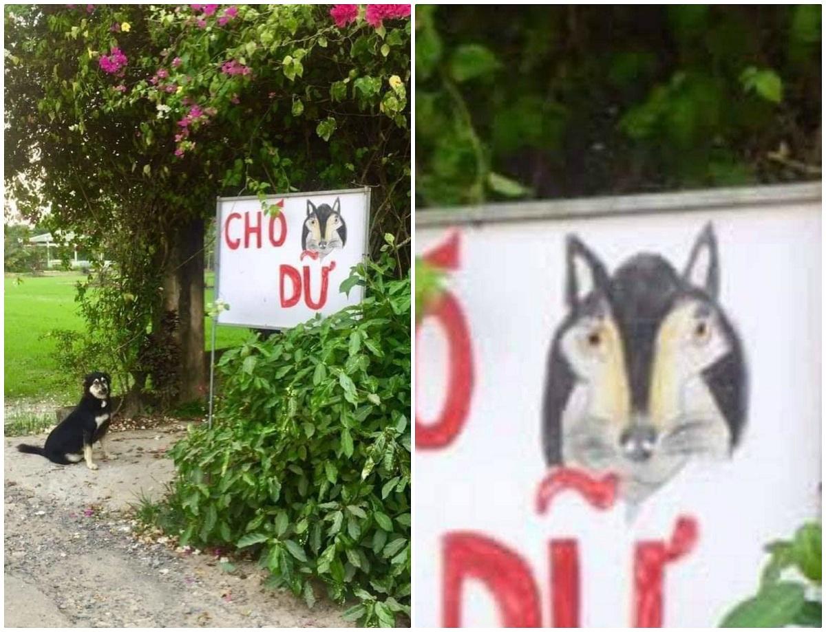 ... với chú chó trong biển cảnh báo, hai khuôn mặt giống nhau như hai giọt nước: nước mắm với nước tương.