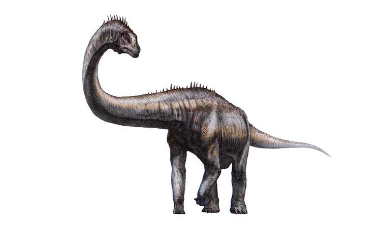 Đồ họa mô phỏng một loài khủng long chân thằn lằn sống trong kỷ Jura. Ảnh: Xinhua.