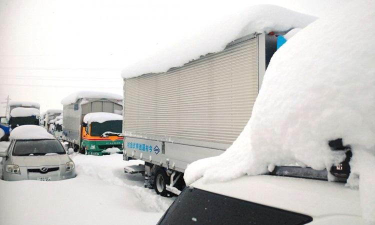 Các phương tiện bị mắc kẹt trên đường cao tốc Kanetsu ở tỉnh Niigata hôm nay. Ảnh: Kyodo.