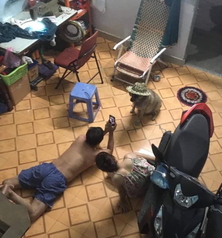 Bố mẹ chơi đùa vui vẻ bên con ruột bị con nuôi chụp trộm.