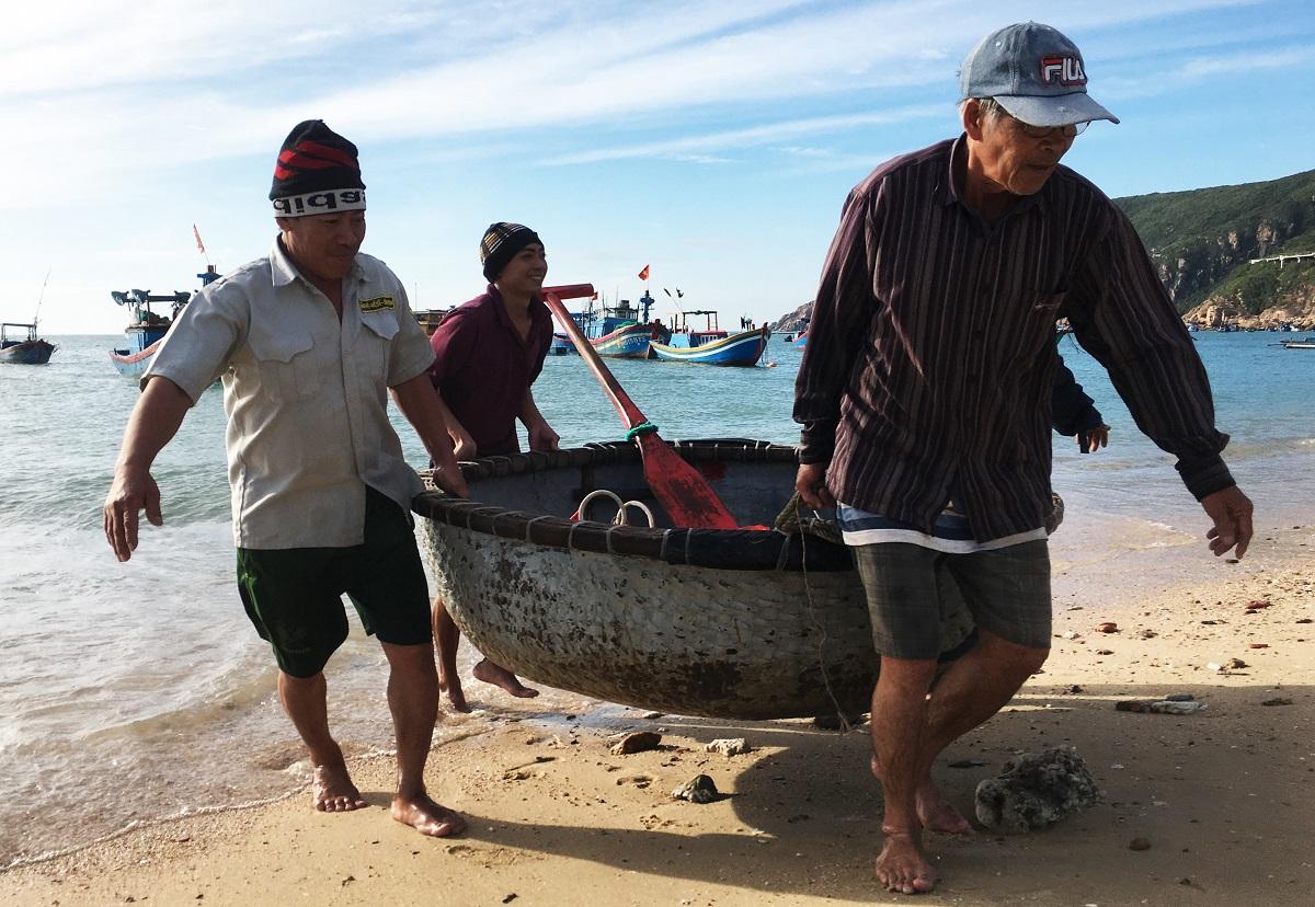 Ngư dân xã Nhơn Hải, TP Quy Nhơn kéo thuyền thúng vào bờ sau khi đánh bắt tôm hùm giống. Ảnh: Phạm Linh.