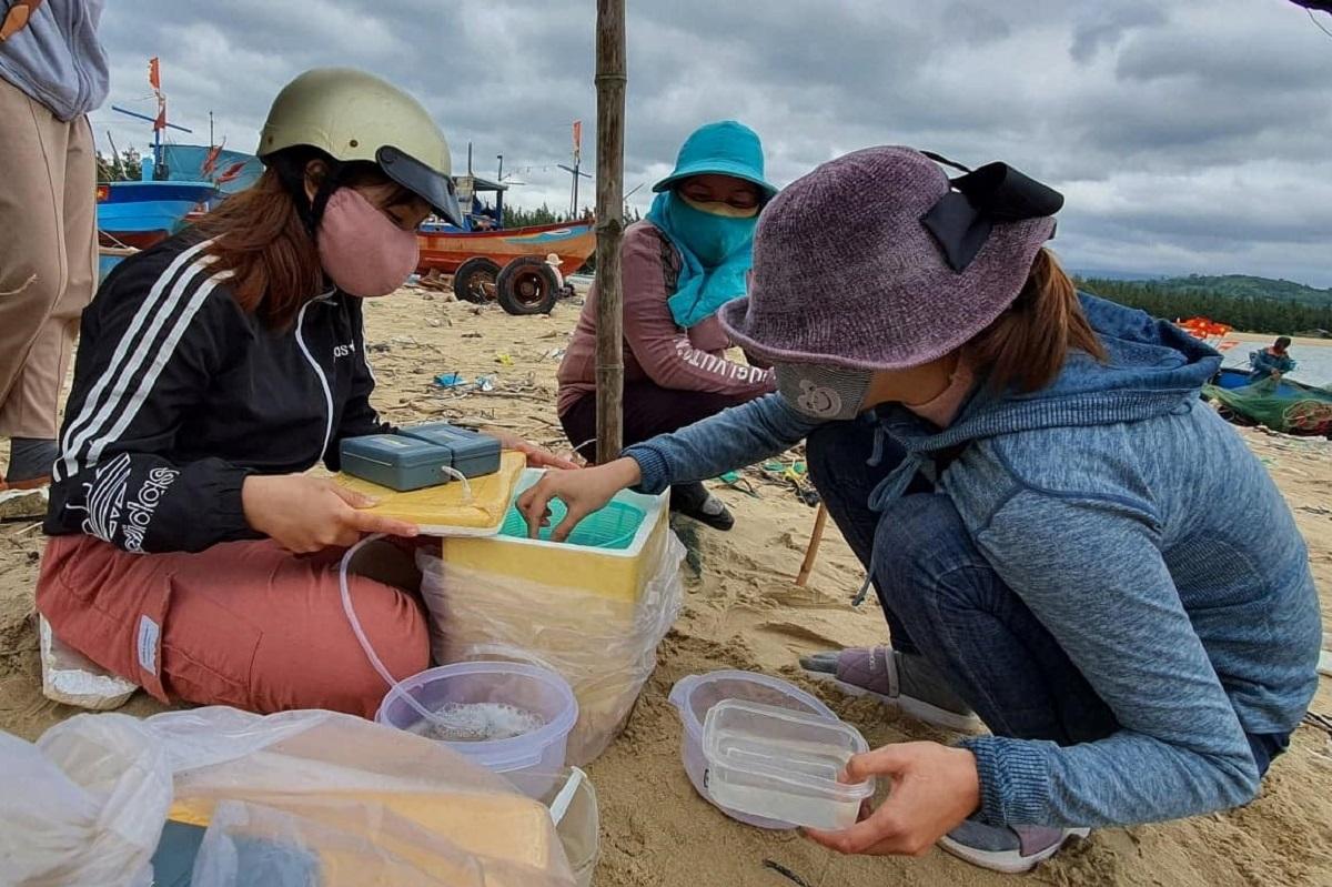 Thương lái xịt nước dùng bơm xịt nước để kiểm tra sức khỏe tôm giống ở vịnh Xuân Đài, Phú Yên. Ảnh: Thạch Thảo.