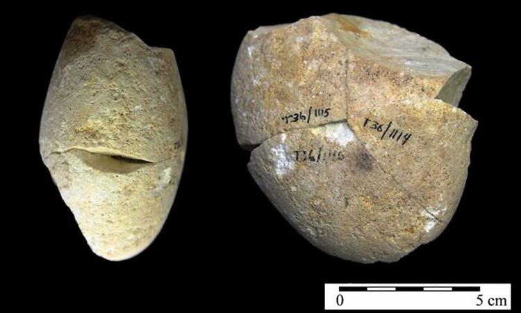 Công cụ đá 350.000 năm tuổi trong hang Tabun. Ảnh: University of Haifa.