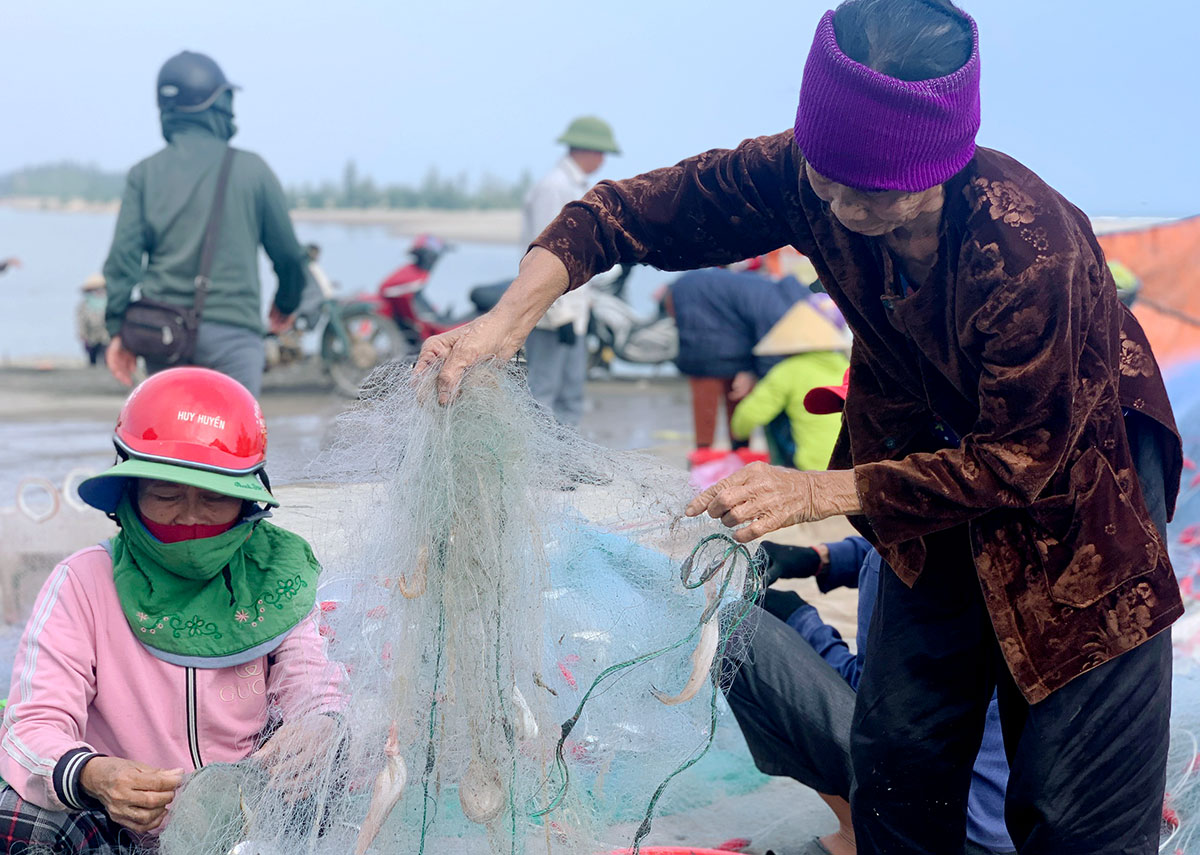 Ngư dân gỡ lưới, phân loại cá cháo. Ảnh: Đức Hùng