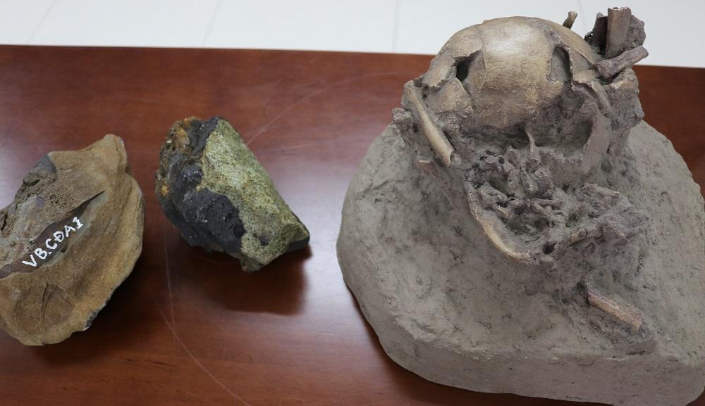 Một số mẫu vật cổ được khai quật trong hang động núi lửa KRông Nô. Ảnh: NX.