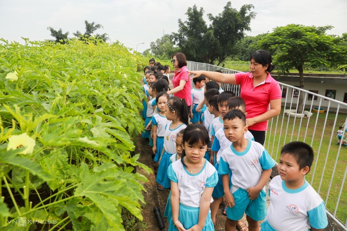Cô trò trường Mầm non Những bông hoa nhỏ (phường Hóa An, TP Biên Hòa, Đồng Nai), tháng 7/2020. Ảnh: Quỳnh Trần