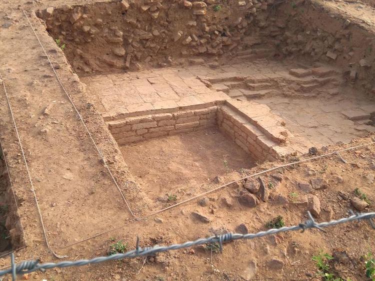 Địa điểm khảo cổ ở Lal Pahari, bang Bihar, Ấn Độ. Ảnh: Excavation at Lal Pahari.