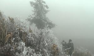Băng tuyết phủ trắng cao nguyên đá Đồng Văn