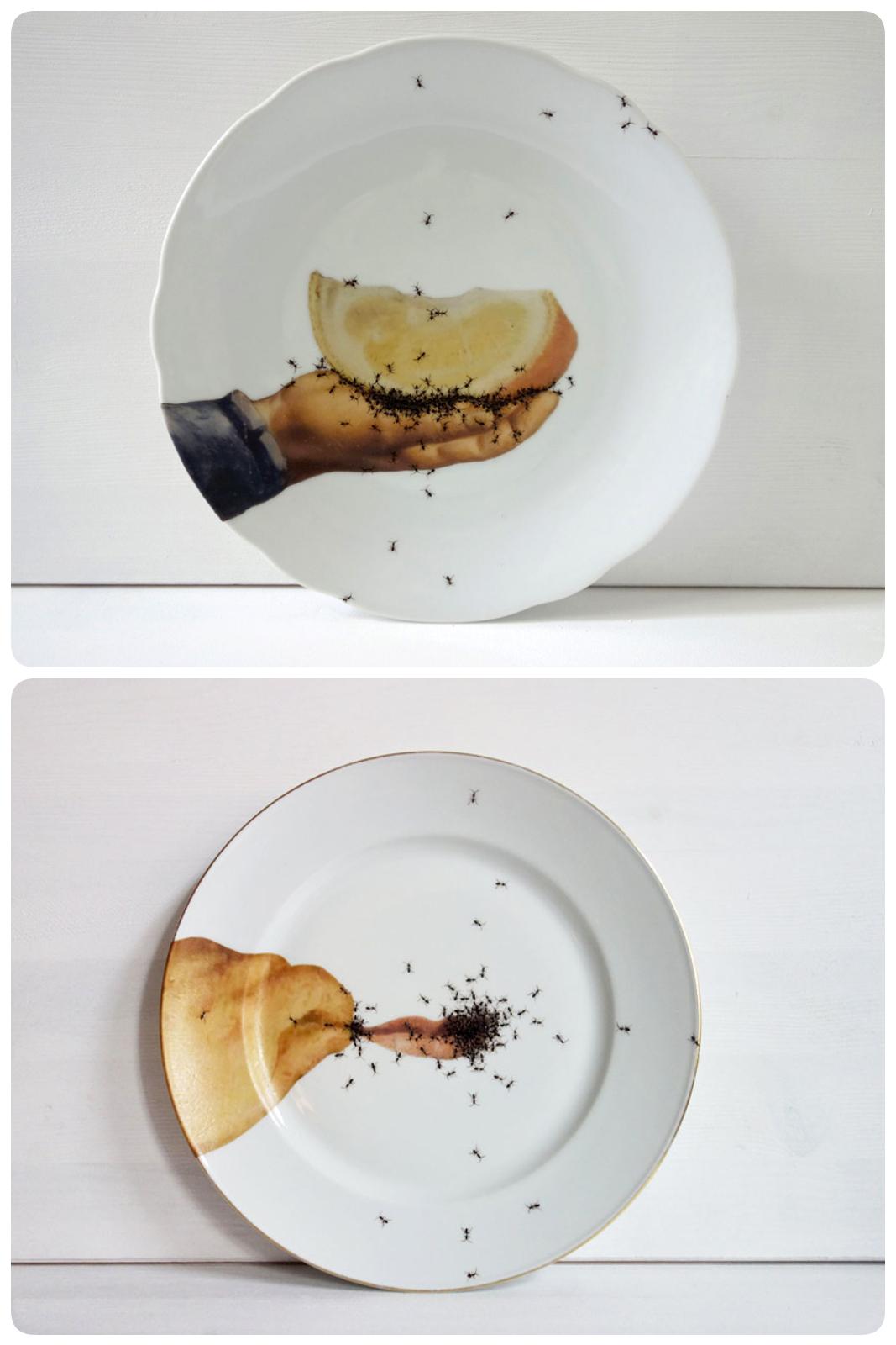 Bộ chén đĩa đầy kiến khiến người xem ngứa ngáy