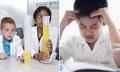 Trường chuyên Tây tìm nhà phát minh, trường Việt luyện gà chọi