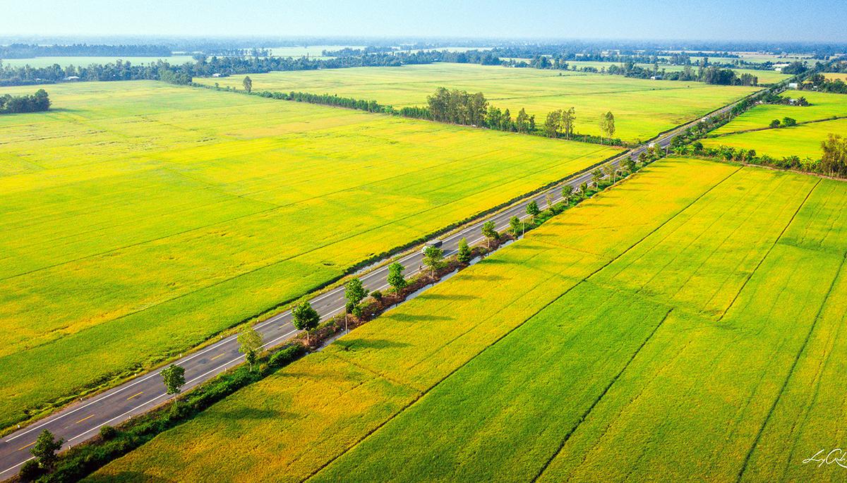 Giai đoạn 1 dự án đường nối Cần Thơ - Hậu Giang có vốn đầu tư 3400 tỷ đồng. Ảnh: Anh Lam