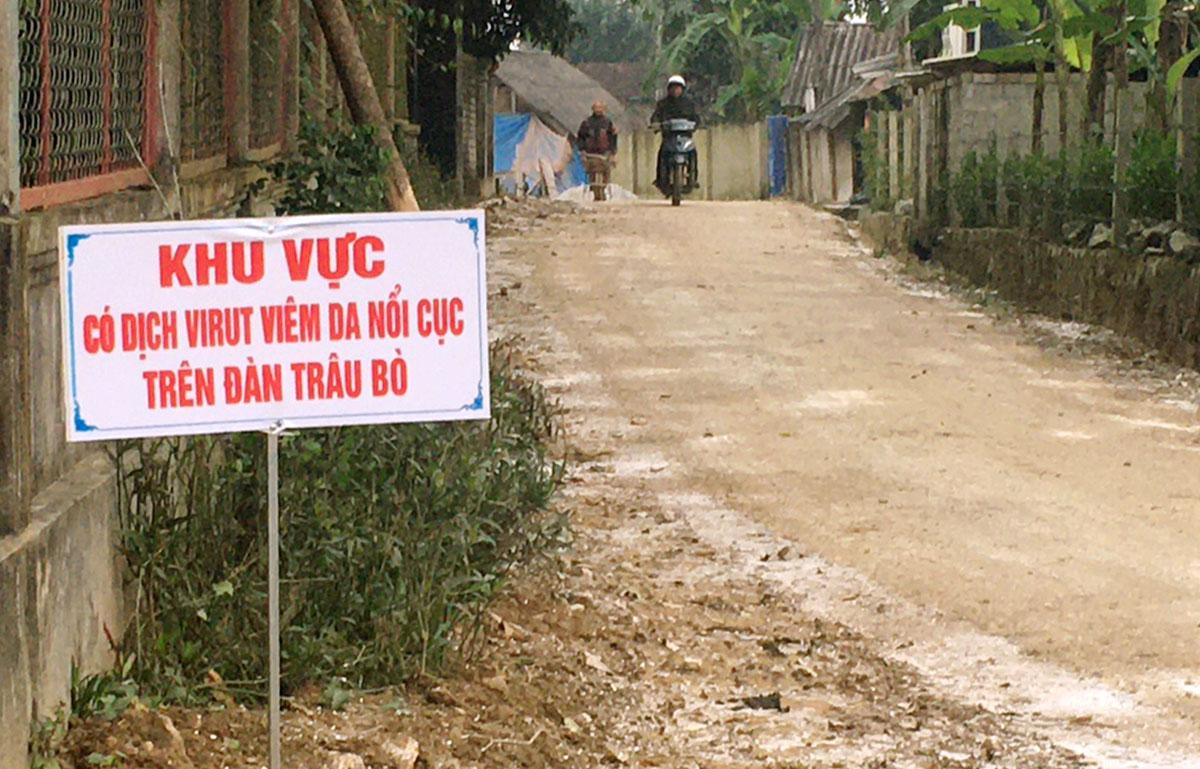 Nhiều tuyến đường ở huyện Hương Khê được cắm biển cảnh báo để người dân đề phòng. Ảnh: Đức Hùng