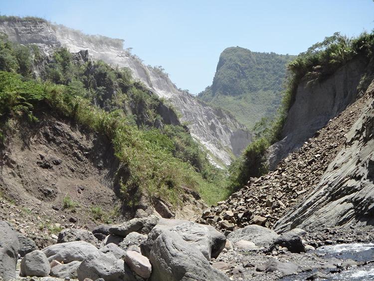Hệ sinh thái phục hồi trên núi Pinatubo sau nhiều thập kỷ. Ảnh: Danny Balete.