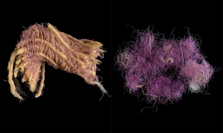 Vải tím 3.000 năm tuổi phát hiện tại thung lũng Timna. Ảnh: Dafna Gazit/ Cơ quan Cổ vật Israel.