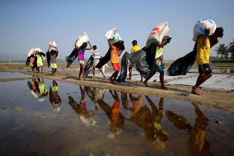 Người tị nạn Rohingya lao động ở Bangladesh. Ảnh: Reuters.