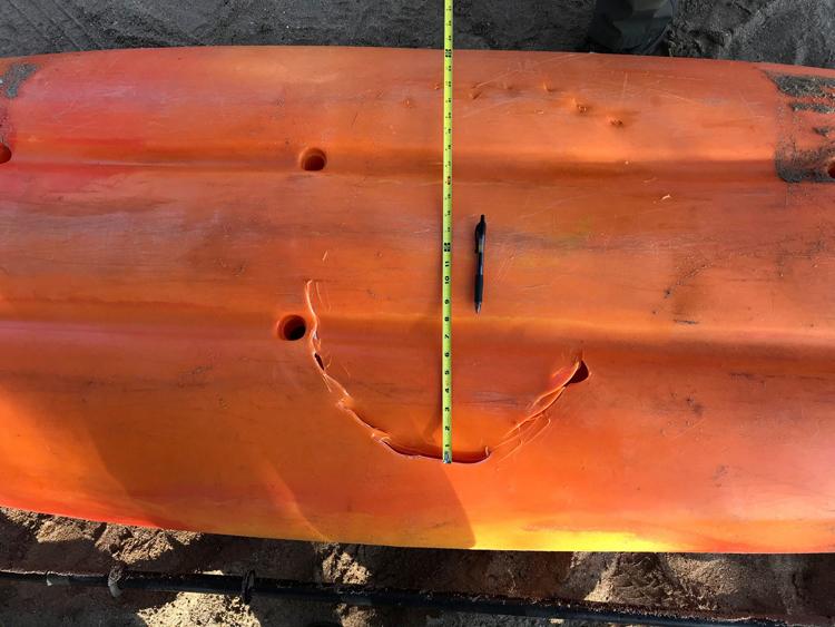 Dấu răng cá mập trên thuyền của Daniel Sullivan và con trai. Ảnh: Hawaii DLNR.