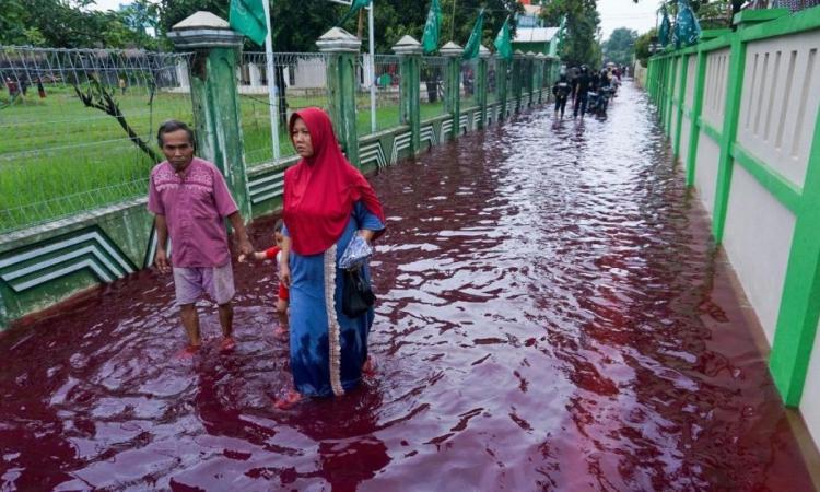 Người dân lội trong dòng nước đỏ như máu ở ngôi làng Jenggot, Indonesia, hôm 6/2. Ảnh: AFP.