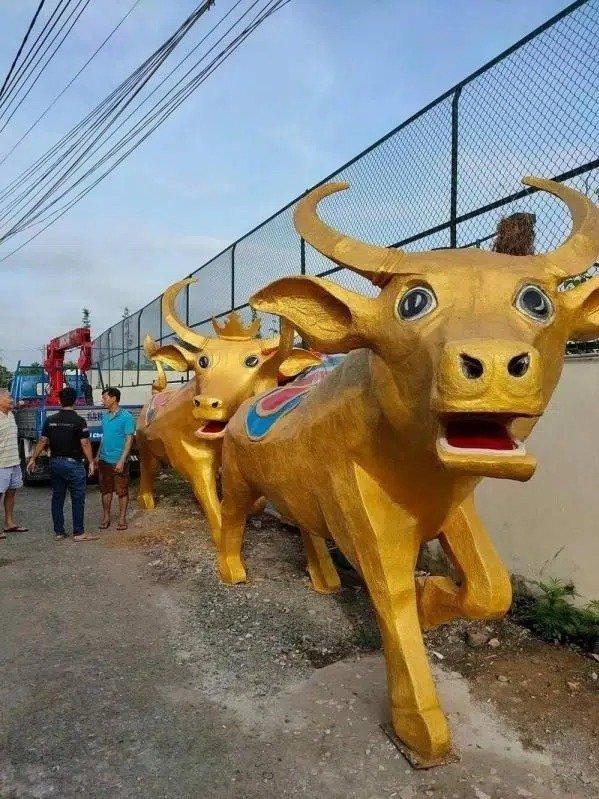 Biểu cảm giống như bị bế đi cách ly của 2 linh vật trâu vàng Tân Sửu ở Long An.