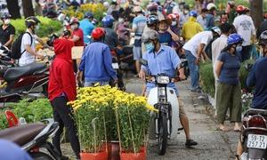 Tiểu thương chợ hoa 'xả hàng' về quê ăn Tết