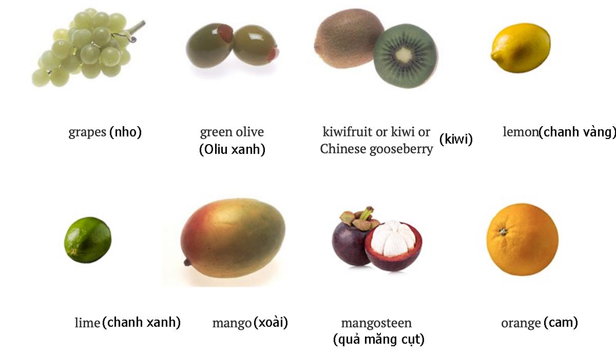 Tên 24 loại quả trong tiếng Anh - 2