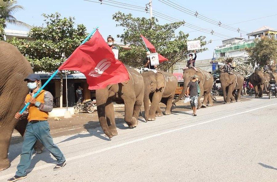 Người biểu tình cưỡi voi ở Ongyaw, Myanmar ngày 24/2. Ảnh: AFP.