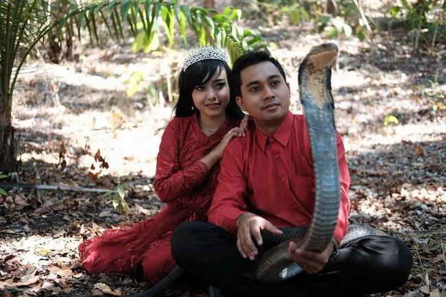 Cặp đôi vô tư chụp ảnh cùng rắn hổ mang.
